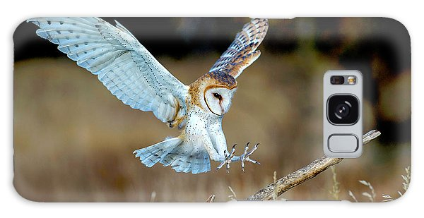 Barn Owl Landing Galaxy Case