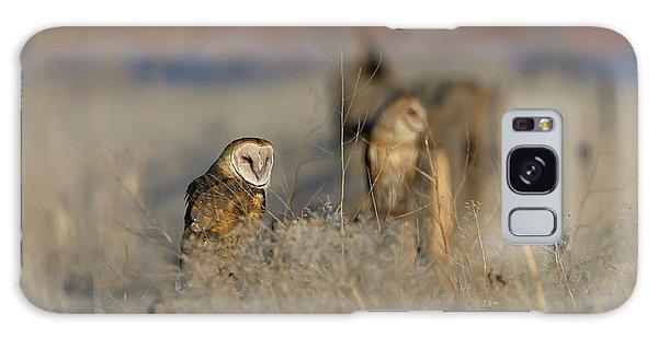 Barn Owls 9 Galaxy Case