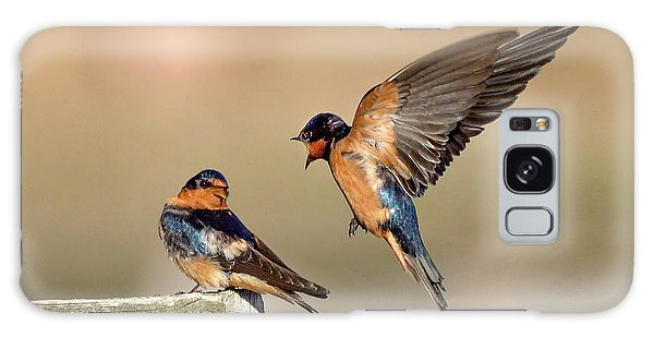 Barn Swallow Conversation Galaxy Case