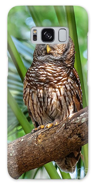 Barred Owl On Perch Galaxy Case