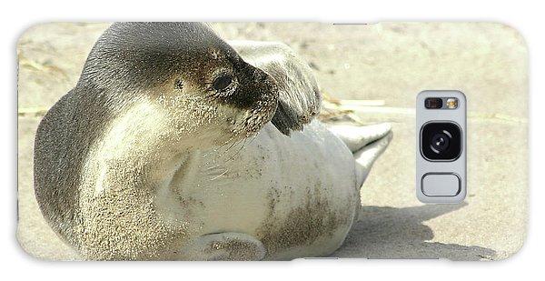 Beach Seal Galaxy Case