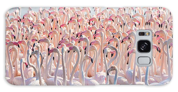 Great Lakes Galaxy Case - Beautiful And Wild - Flamingos by Keyur Athaide