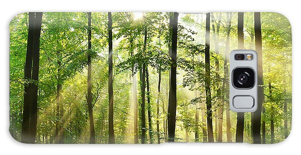 Pine Branch Galaxy Case - Beautiful Autumn Forest In Poland by Piotr Krzeslak