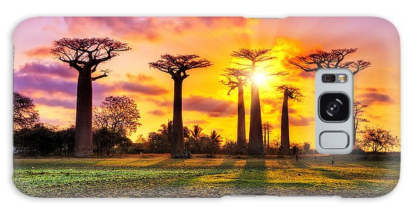 Scenery Galaxy Case - Beautiful Baobab Trees At Sunset At The by Dennis Van De Water