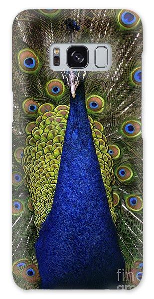 Indian Head Galaxy Case - Beautiful Bird, Male Of Indian Peacock by Ondrej Prosicky