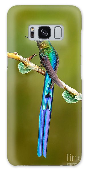 Behaviour Galaxy Case - Beautiful Blue Glossy Hummingbird With by Ondrej Prosicky