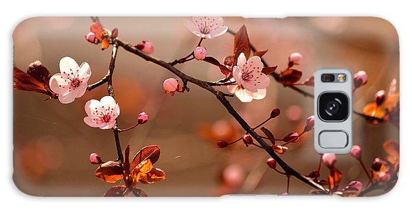 Branch Galaxy Case - Beautiful Flowering Japanese Cherry - by Montypeter