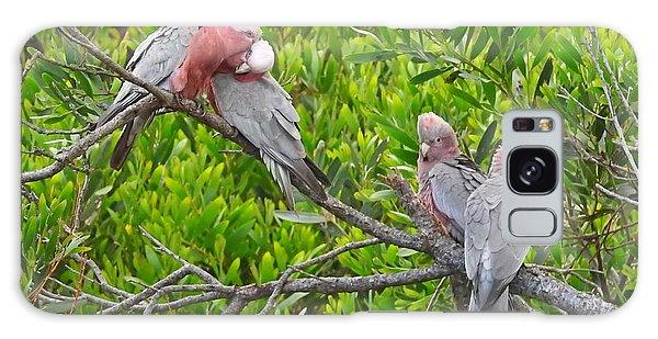 Wilsons Promontory Galaxy Case - Beautiful Galah Birds With Babies. Wilsons Promontory National Park, Australia by Jen Beck
