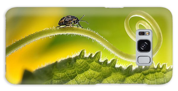 Ecology Galaxy Case - Beautiful Insects On A Leaf Close-up by Ledyx