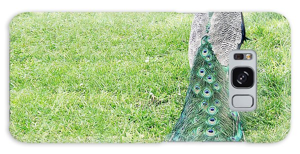 Natural Galaxy Case - Beautiful Male Peacock On The Grass by Valentina Photos
