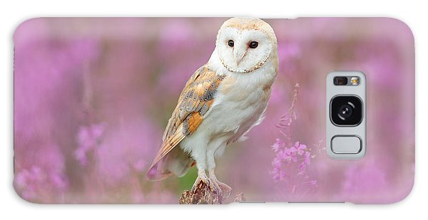 Perches Galaxy Case - Beautiful Nature Scene With Owl And by Ondrej Prosicky