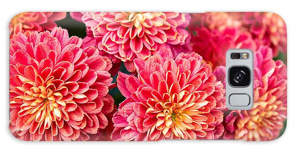 Horizontal Galaxy Case - Beautiful Of Red Garden Dahlia Flower by Suwat  Wongkham