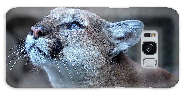 Beautiful Puma Galaxy Case