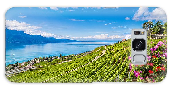 Farmland Galaxy Case - Beautiful Scenery With Rows Of Vineyard by Canadastock
