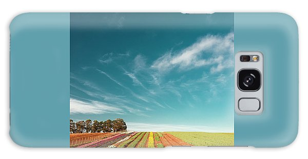 Galaxy Case featuring the photograph Beautiful Tulip Farm At The Table Cape In Tasmania. by Rob D