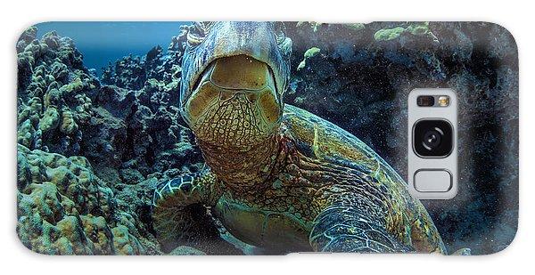 Turtle Galaxy Case - Beautiful Underwater Wildlife Postcard by Willyam Bradberry