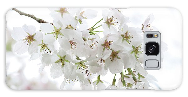 Beautiful White Cherry Blossoms Galaxy Case