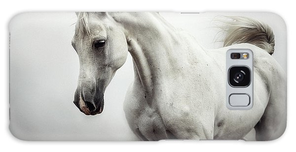 Galaxy Case featuring the photograph Beautiful White Horse On The White Background by Dimitar Hristov