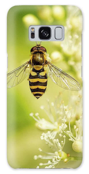 Galaxy Case featuring the photograph Bee Up by Bob Cournoyer