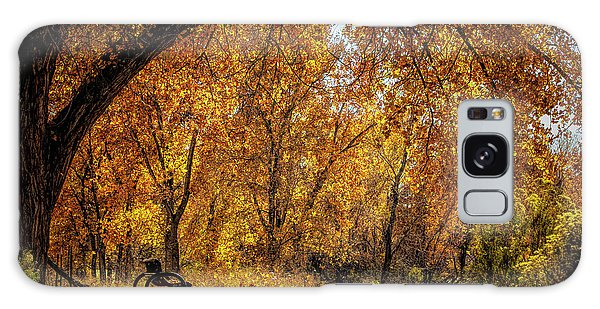 Bench With Autumn Leaves  Galaxy Case