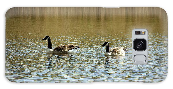 Bidston.  Bidston Moss Wildlife Reserve. Two Geese. Galaxy Case