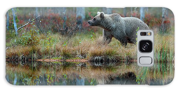 Powerful Galaxy Case - Big Brown Bear Walking Around Lake In by Ondrej Prosicky