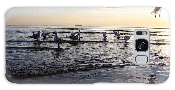 Seagulls Galaxy Case - Birds On The Sunset. Seagulls At Sunset by Antshev