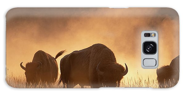 Bison In The Dust Galaxy Case