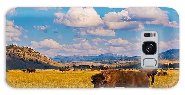 State Park Galaxy Case - Bison Paradise In Yellowstone National by Lorcel
