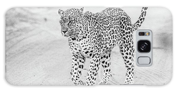Black And White Leopard Walking On A Road Galaxy Case