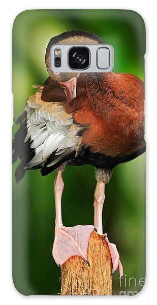 Perches Galaxy Case - Black-bellied Whistling-duck by Ondrej Prosicky