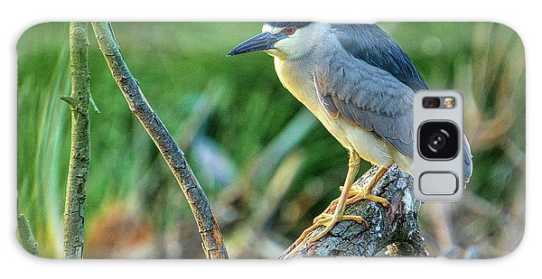 Black Crowned Night Heron Galaxy Case