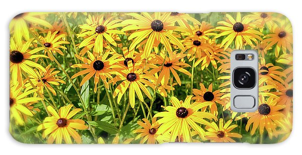 Flowerbed Galaxy Case - Black Eyed Susans by Delphimages Photo Creations