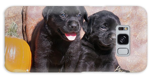 Chocolate Lab Galaxy Case - Black Labrador Retriever Puppies by Zandria Muench Beraldo