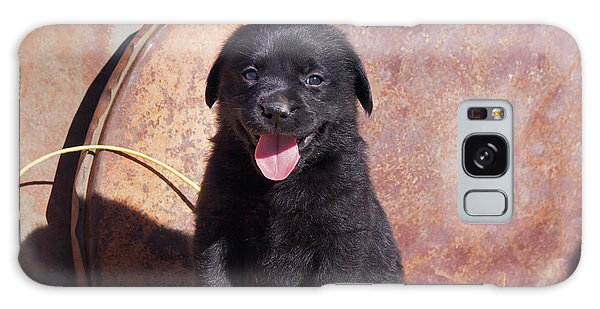Chocolate Lab Galaxy Case - Black Labrador Retriever Puppy Portrait by Zandria Muench Beraldo