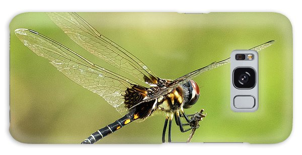 Black Saddlebags Dragonfly Galaxy Case