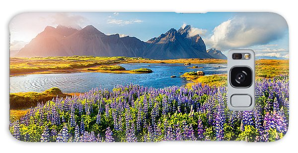 Scenery Galaxy Case - Blooming Lupine Flowers On The by Andrew Mayovskyy