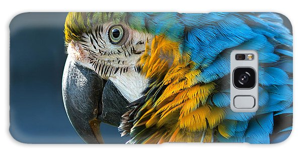 Macaw Galaxy Case - Blue-and-yellow Macaw Lat. Ara Ararauna by Bogachyova Arina