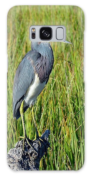 Blue Heron At Attention Galaxy Case
