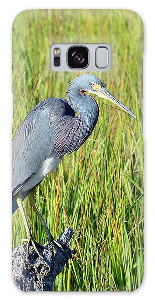 Blue Heron On The Lookout Galaxy Case