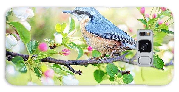 Blue Orange Bird Galaxy Case