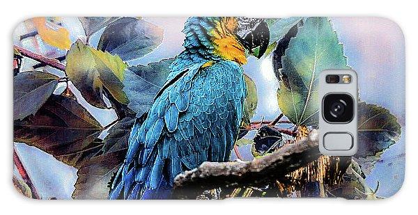 Blue Parrot Galaxy Case