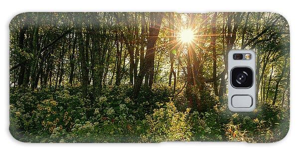 Blue Ridge Parkway - Last Of Summers Light, North Carolina Galaxy Case