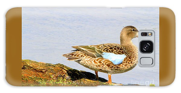 Blue-winged Teal Female Duck Galaxy Case