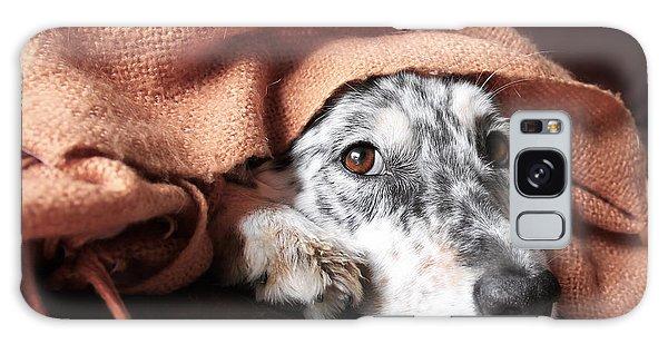 Mottled Galaxy Case - Border Collie  Australian Shepherd Dog by Lindsay Helms