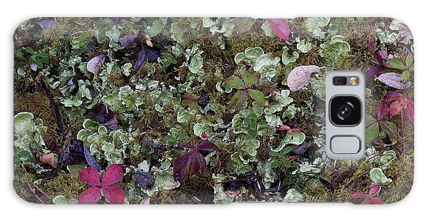 Boreal Forest Galaxy Case - Boreal Forest, Lichen, Moss, Mushroom by Gerry Reynolds