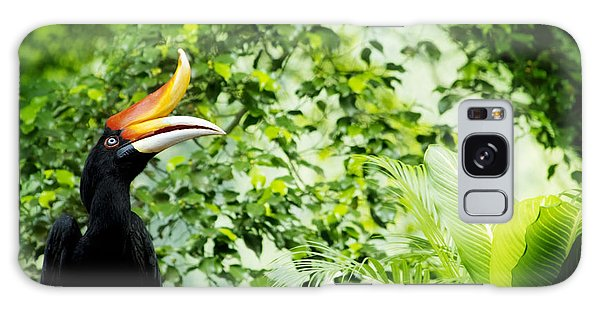 Perches Galaxy Case - Borneo Exoctic Great Hornbill In by Szefei