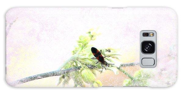 Boxelder Bug In Morning Haze Galaxy Case