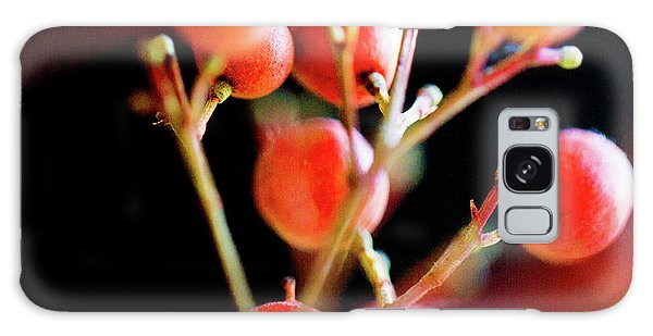 Galaxy Case featuring the photograph Brazilian Pepper 0423 by Mark Shoolery