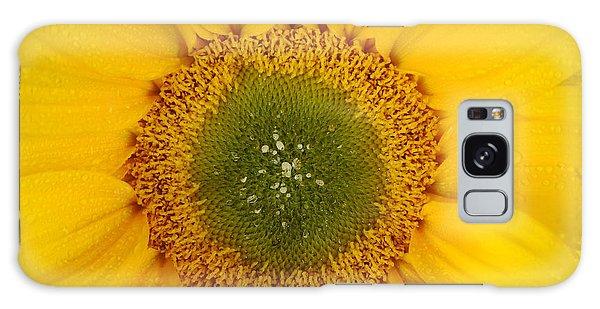 Australia Galaxy Case - Nature's Sunshine by Az Jackson
